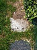 image of grave number 82726